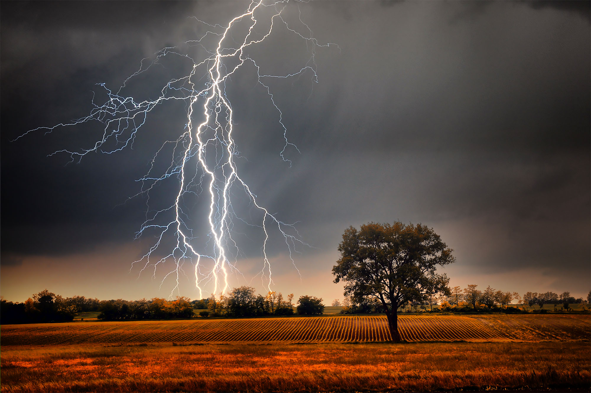 The lightning data experts at Dynamic Measurement are pioneering the way geological data is collected!